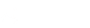 Rains Media Logo